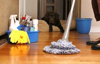 Namų valymas, kasdieninis valymas, generalinis valymas, poremontinis valymas, valymo paslaugos, patalpų valymas, grindų valymo, vaškavimas alyvavimas